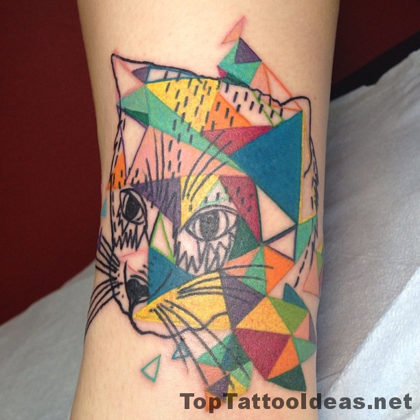 Colourful Triangle Cat