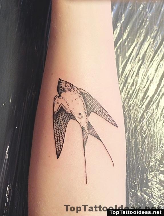 Swallow Arm Tattoo By Diana Katsko
