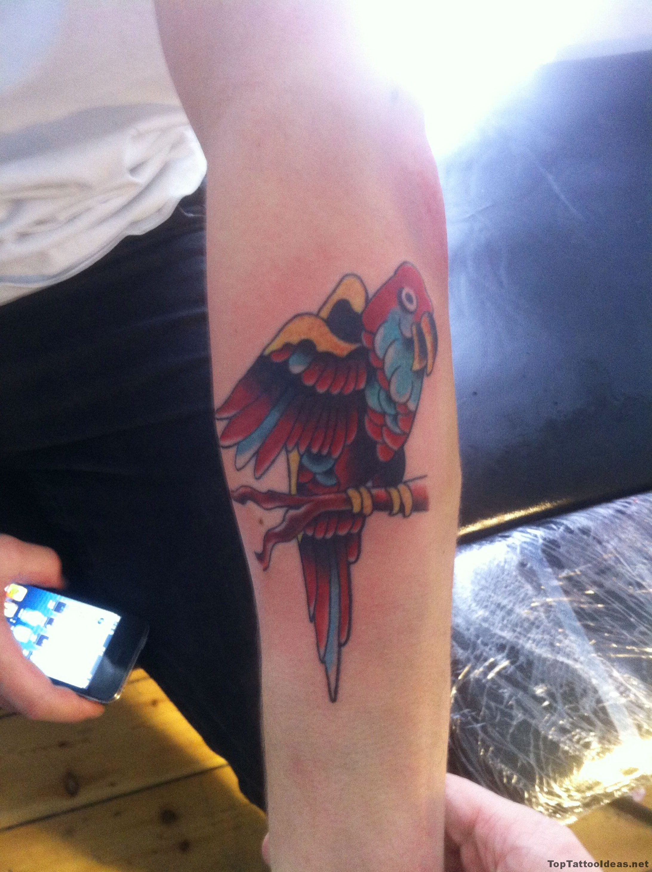 Parrot Arm Tattoo Idea