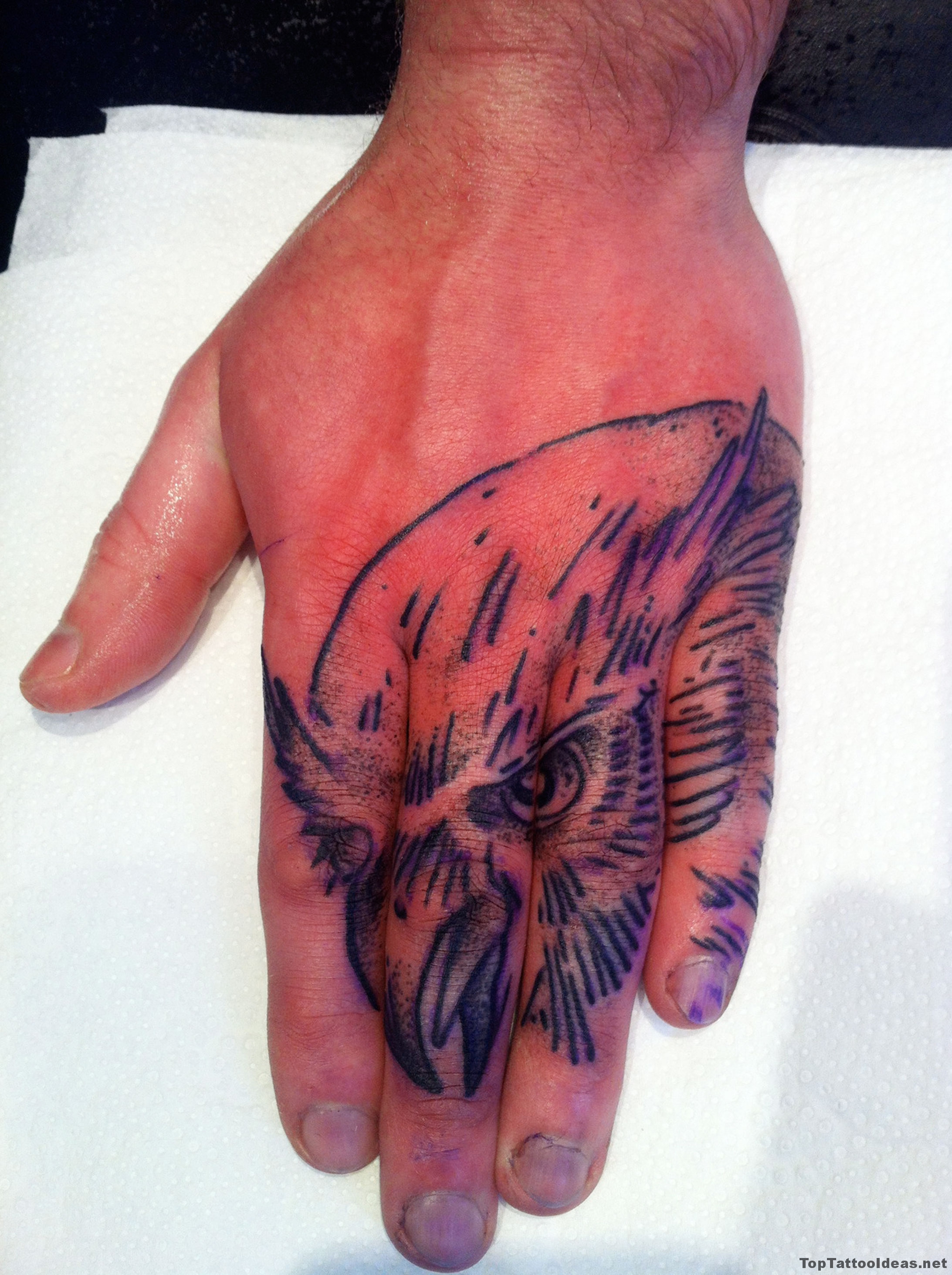Hawk Hand Tattoo Idea