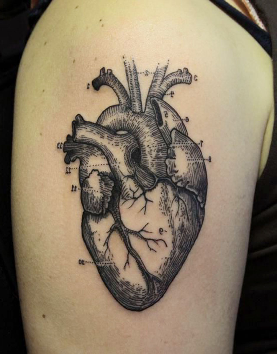 Anatomical Heart Sleeve Tattoo Idea